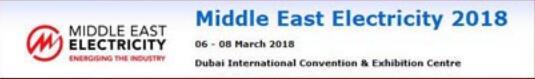 我公司参加了2018年中东迪拜电力展